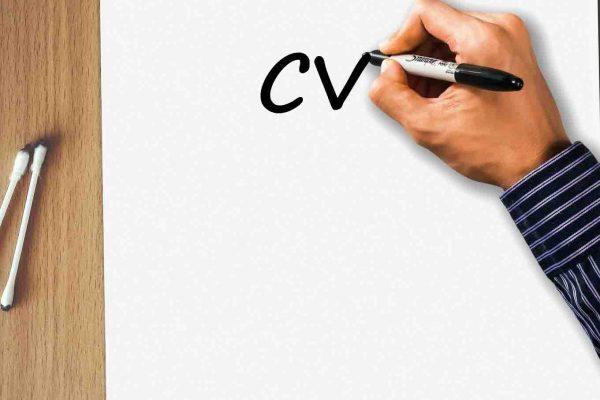 Trabaja con nosotros - Translaverba CV